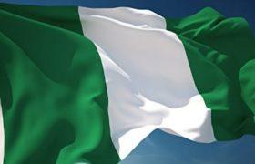 nigerian flag infofinder